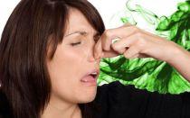 Откуда неприятный запах при геморрое?